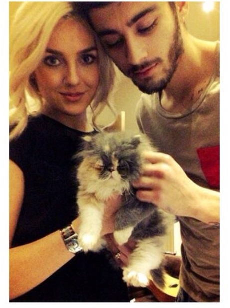 Perrie and Zayn Cat
