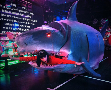 Katy Perry coming out of sharks mouth