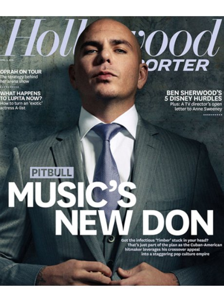 Pitbull Hollywood Reporter 2014
