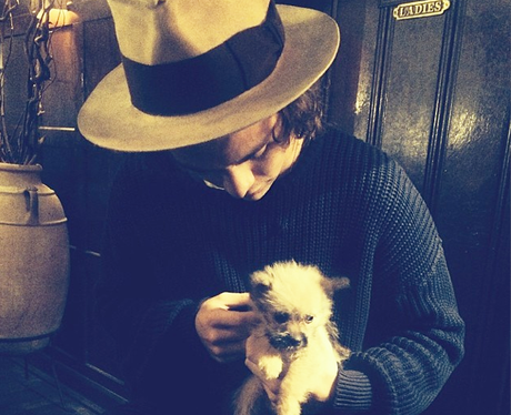 Harry Styles with a dog