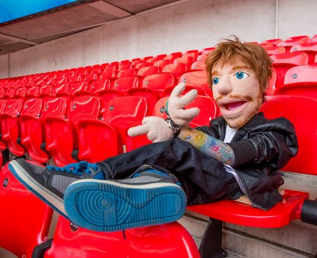 Ed Sheeran Pupper