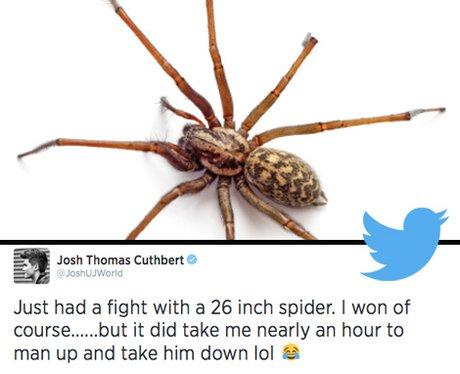 Tweets That Got Fans Talking This Week (26th June)