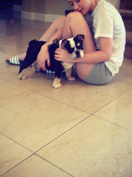 Iggy Azalea and dog on instagram