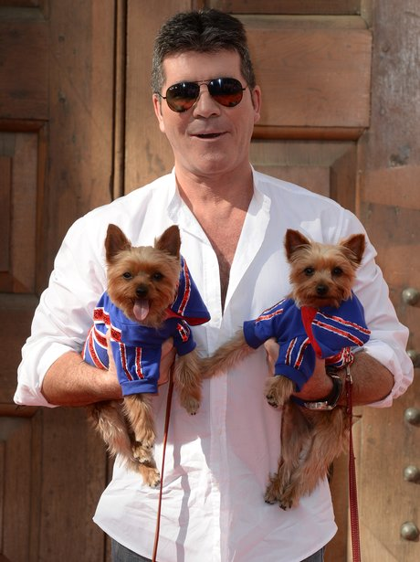 Simon Cowell with pet dogs