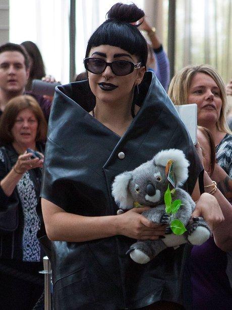 Lady Gaga with a Koala