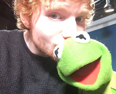 Ed Sheeran and Kermit