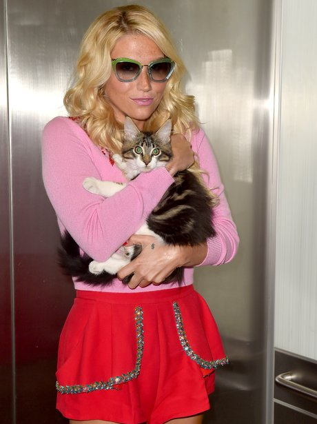 Kesha with her cat