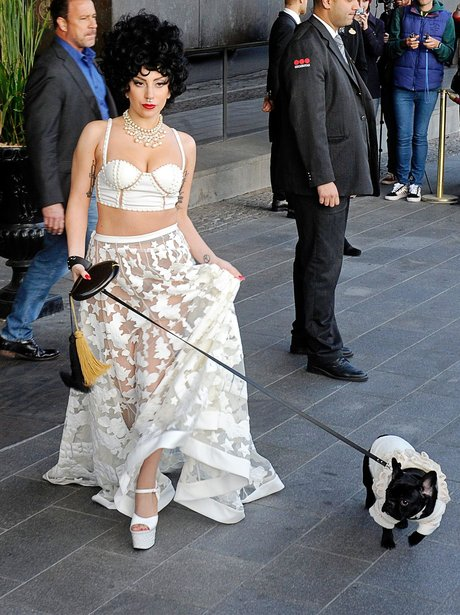 Lady Gaga with dog Asia