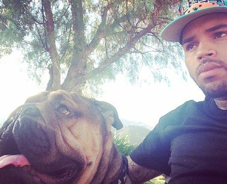 Chris Brown and dog