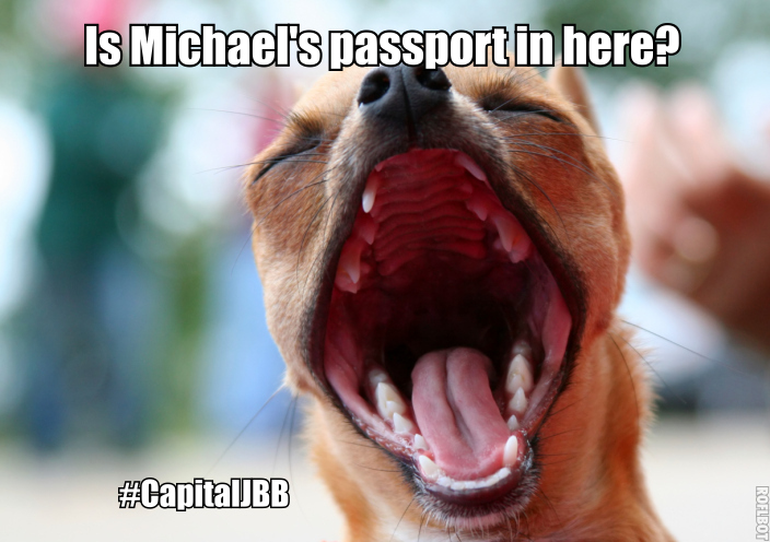 Michael 5SOS Passport