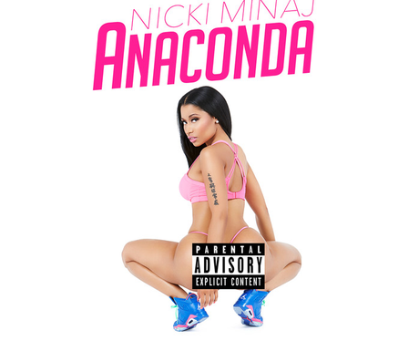 Anaconda Artwork With Border
