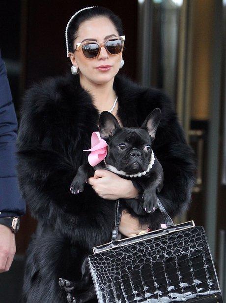 Lady Gaga & Asia