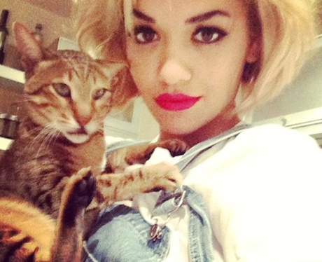 Rita Ora Cat Bruno