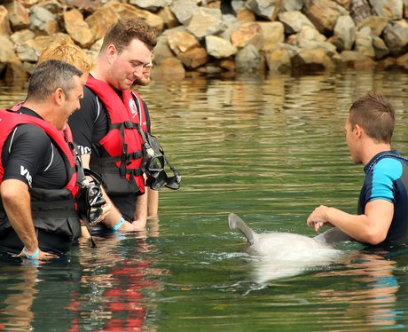 Sam Smith on holiday with dolphins