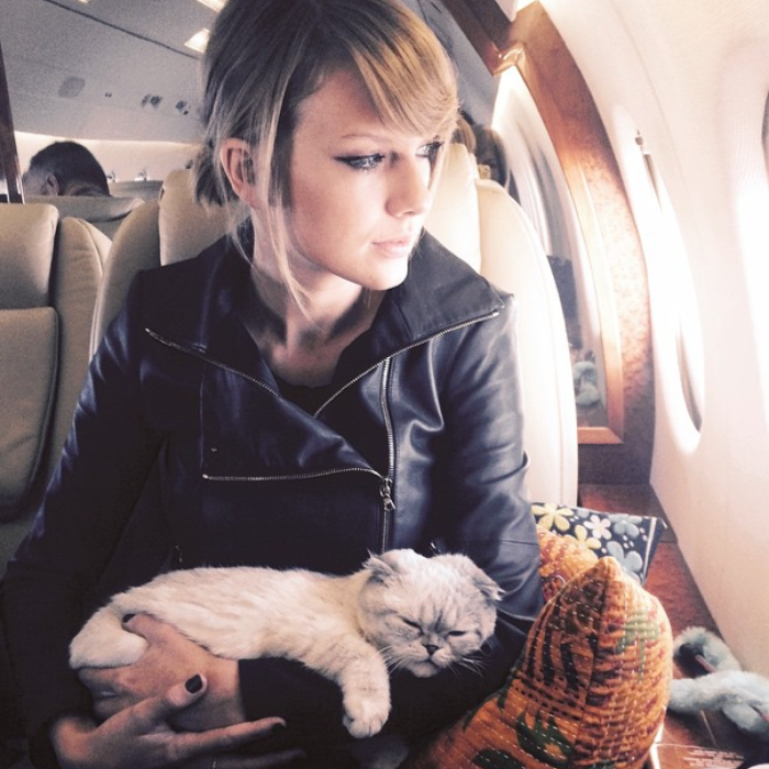 Drake Went Buck Wild Buying Gifts For Taylor Swift S Cats Now We Don T Know What Capital