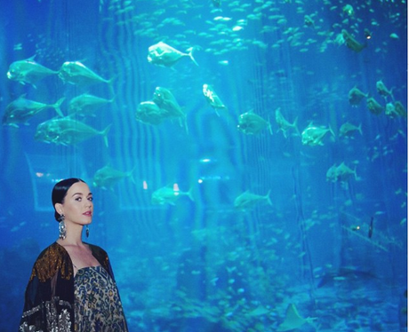 Katy Perry outside an aquarium