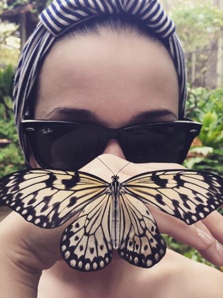 Katy Perry Butterfly