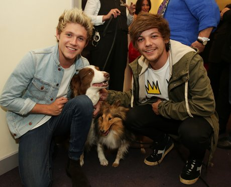 Niall Horan and Louis Tomlinson with dog matisse