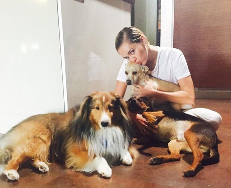 Miley Cyrus with her dogs