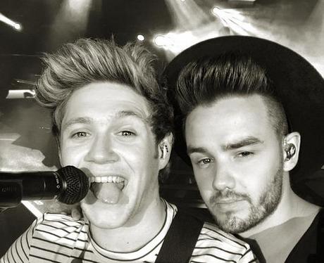 Niall Horan and Liam Payne Selfie