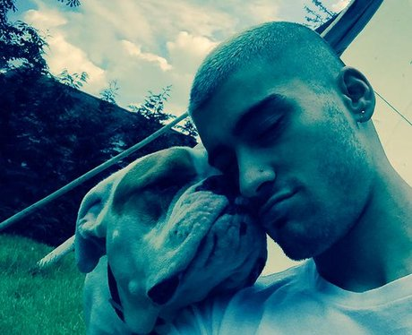 Zayn Malik and his dog