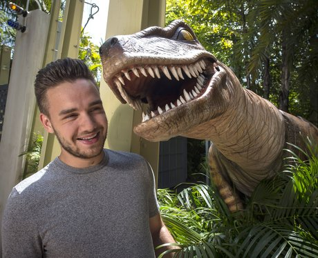 Liam Payne at Universal Orlando Resort