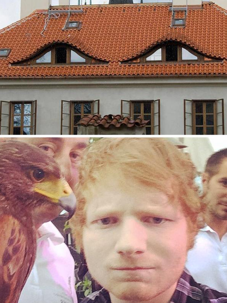 Buildings that look like celebs