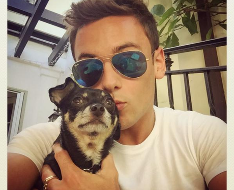 Tom Daley and Dog on instagram
