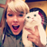 Image 1: Taylor Swift Cat