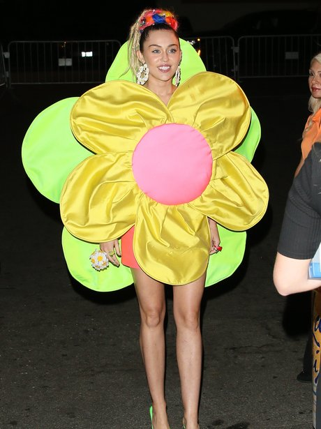 Miley Cyrus dresses as a flower