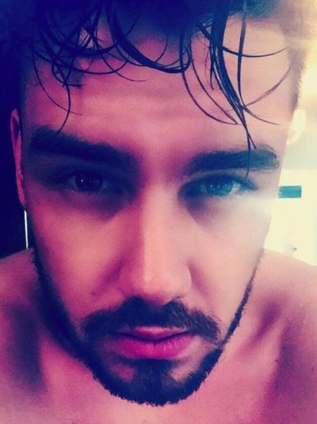 Liam Payne Selfie Instagram