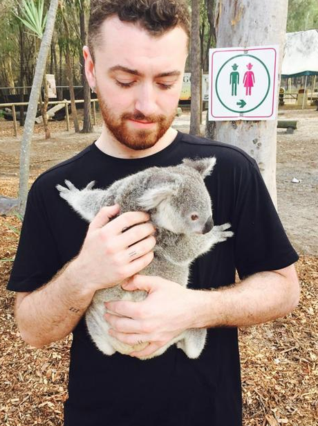 Sam Smith Koala Bear Instagram