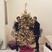 Image 3: Nick Jonas Christmas Instagram