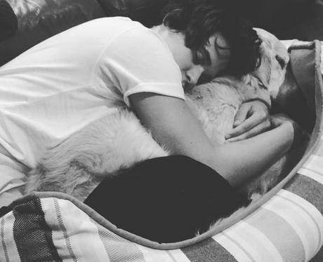 The Vamps Brad Simpson Dog Instagram