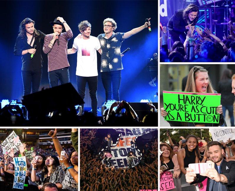 One Direction Fan Gallery