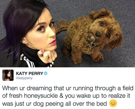 Best Tweets - 5th February