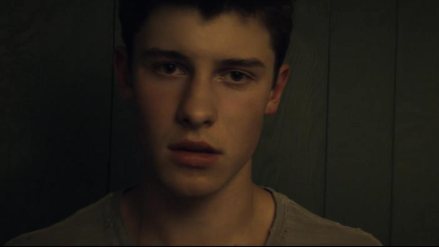 Who Is Shawn Mendes Tr... Taylor Swift Songs List Lyrics