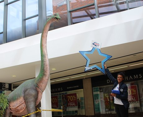 Dinosaurs at Grosvenor?!