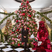 Image 8: Kris Jenner poses infront of her massive Christmas