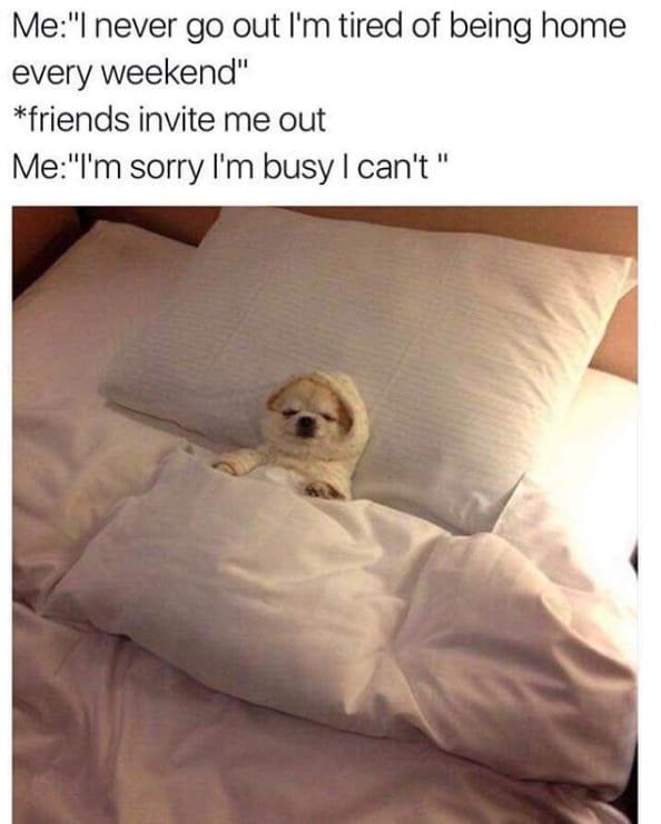 Antisocial Memes
