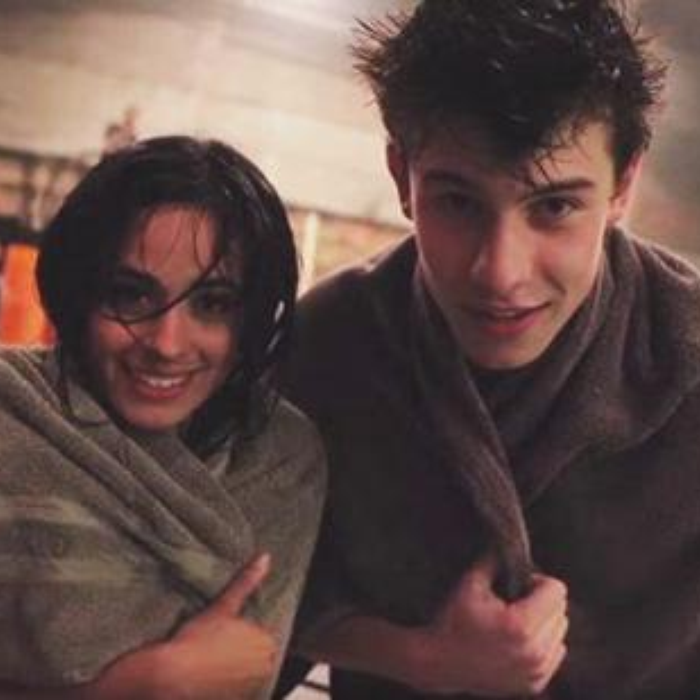 shawn mendes and camila cabello relationship help
