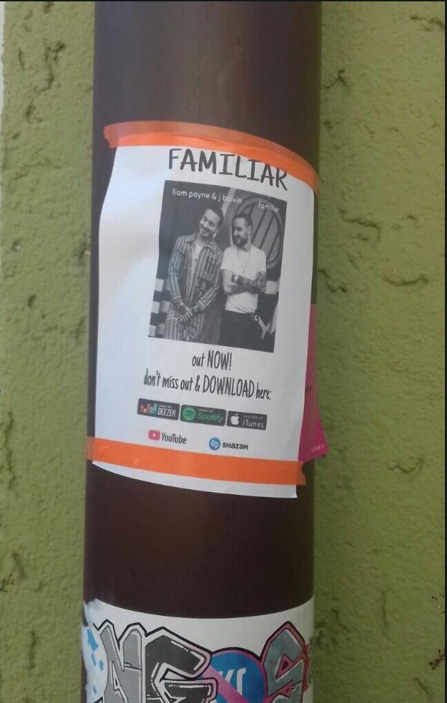 Liam Payne Fan