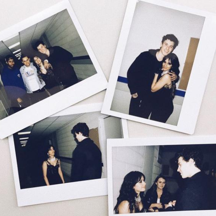 Camila Cabello Shawn Mendes Friends